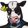 Доля хромых коров в стаде - последнее сообщение от gur2